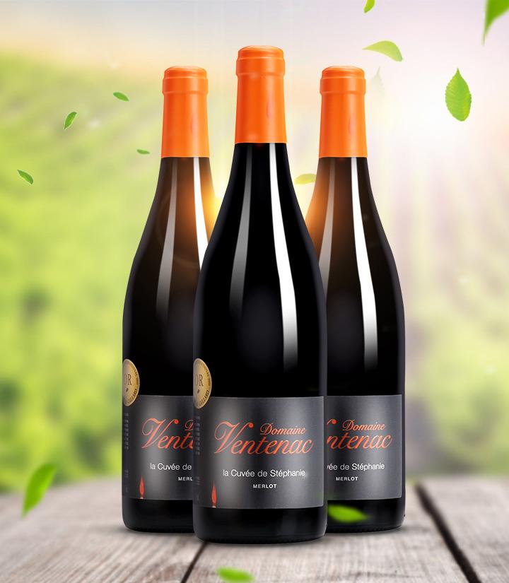 13°法国万特纳庄园思狄梵特酿干红葡萄酒750ml 件